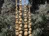 buddha-beads-02
